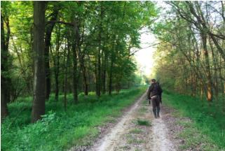 Expedicion-de-caza-en-Hungría