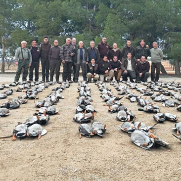 Tirada de patos en Albacete