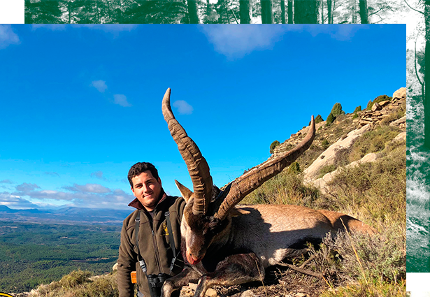 hunting-ibex-in-Spain