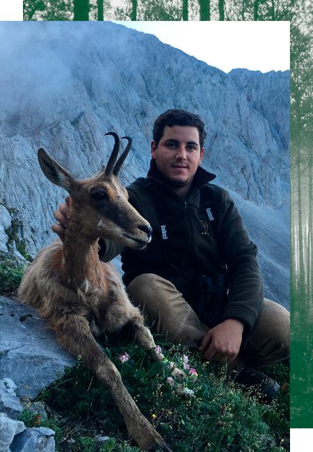 Jagen kantabrischen chamois in Spanien