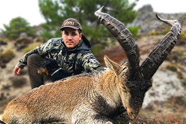 Hunting Southeastern Ibex in Spain