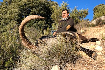 hunting in Spain, ibex hunt Spain, spanish ibex sierra nevada, spanish ibex southeastern, hunting ibex Spain, ibex zone Spain, cheap hunting ibex Spain, Sierra Nevada Hunting ibex, spain hunting ibex, blaser safaris hunting Spain, fouribexhunt, iberhunting ibex Spain, grand Slam spanish ibex, caccia, oxota, jagd Spanien